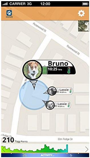 Tagg Pet GPS Plus