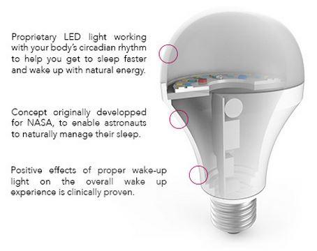 Holî Sleep Companion Smart Light Bulb