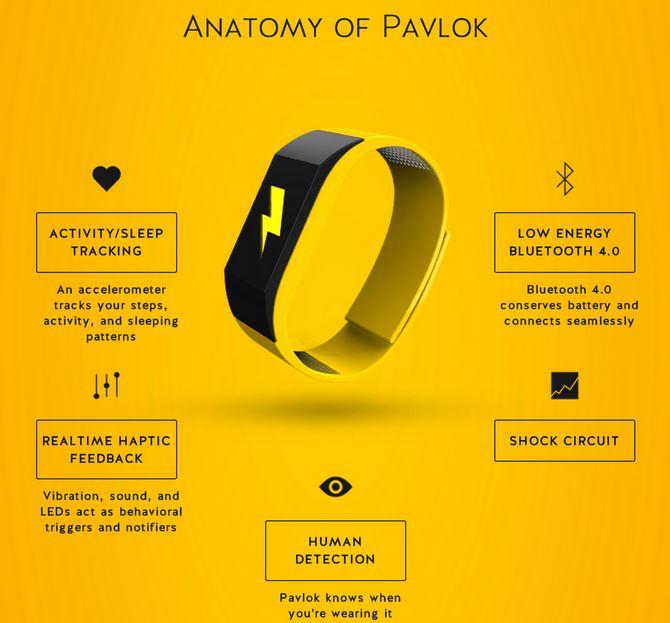 Pavlok Motivational Bracelet