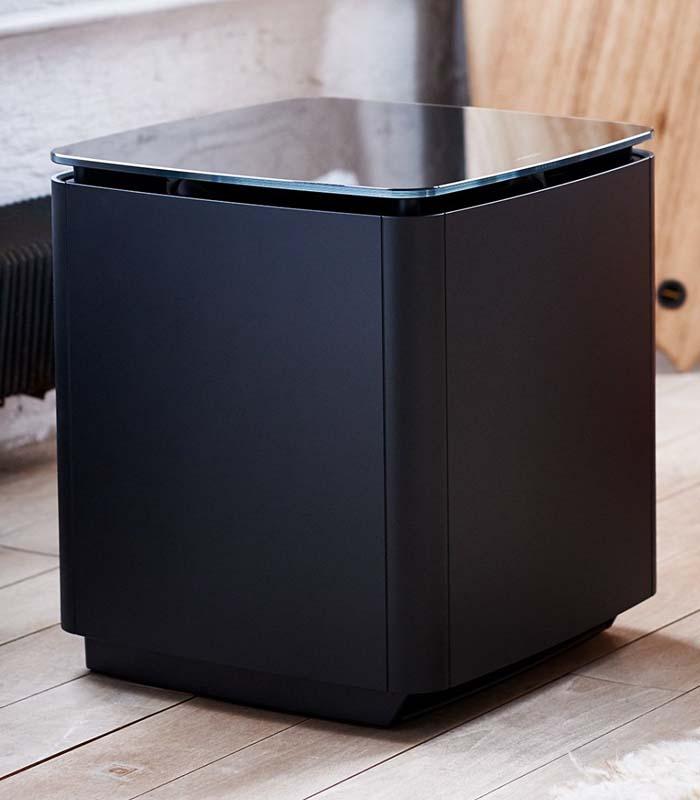 Bose-Acoustimass-300