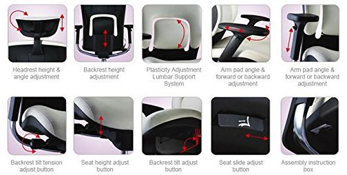 GM Seating Ergolux