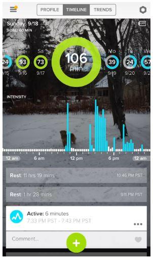 Whistle 3 App