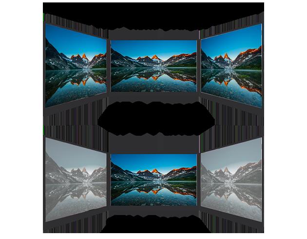 ips vs tn panel