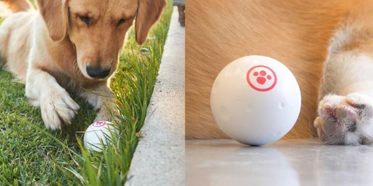 GOMI Smart Ball