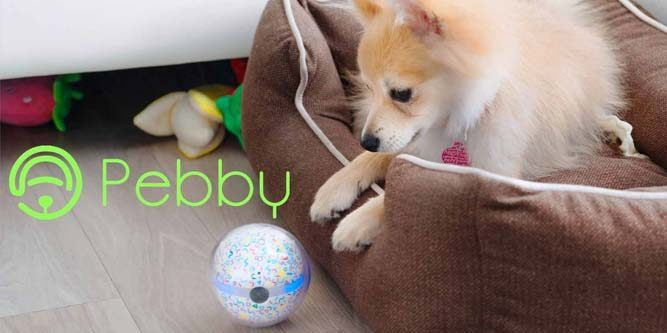 First Look Review Of The Pebby Smart Ball Robotic Dog Toy