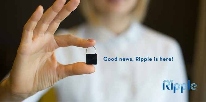 Ripple 24/7 Personal Safety Monitoring Device Review - Nerd Techy
